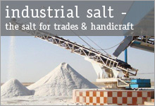 industrial salt - the salt for trades & handicraft